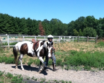 horse rides ed